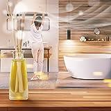 Raumduft Diffuser LEMONGRASS / ZITRONENGRAS 100ml, mit duftstäbchen /stäbchen, mit naturreines ätherisches lemongras Öl, intensiv und langanhaltend natürlicher Raumduft, 0% Alkohol, Raumduft-Set zum Aromatisieren der Innenraumluft fur Raum, Küche, Baden, Zuhause, Büro, Boutique, SPA, Fitnessclub, Restaurant, Aromatherapie, bester Raumlufterfrischer, Glas, von AROMATIKA - 6