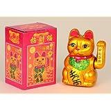 Chino gato con winke de huella Altura 17cm