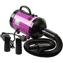 Ananapa Profesional Perros Cuidado secador 2800 W Low Noise Secador de Pelo  para Perros y Gatos 43e3a11b718d