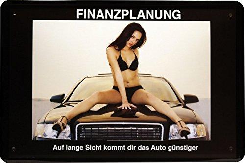 """Blechschild Sexy PinUp Girl """" Finanzplanung """" 20 x 30cm Reklame Retro Blech 1222"""