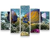 5 teiliges Wandbild auf Leinwand (Gesamtmaß: 150x100cm) Korallenriff mit tropischen Fischen –...