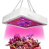 HENGMEI 300W Pflanzenlampe Pflanzenleuchte Pflanzenlicht Wachstumslampe Rot&Blau Zimmerpflanzen Wuchslampen Innengarten Pflanze wachsen Licht (300W)