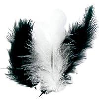 50 plumes d'oiseaux camaïeu de noir et blanc