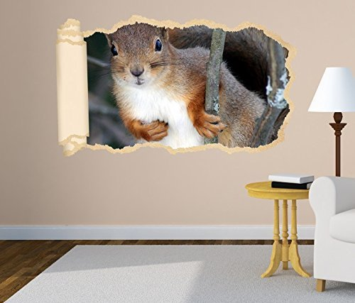 3D Wandtattoo Tapete Eichhörnchen Tier Wald Nagetier Wand Aufkleber Wanddurchbruch Deko Wandbild Wandsticker 11N1134, Wandbild Größe F:ca. 97cmx57cm -