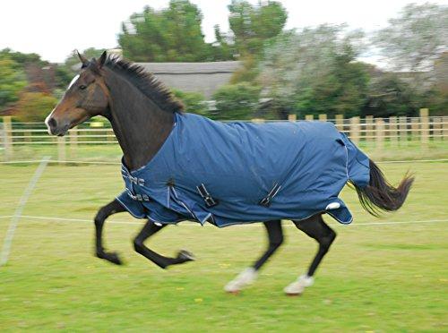 New Arizona 100gsm Mid leicht wasserdicht Outdoor Pferd Pony Pferdedecke ideal Herbst/Frühling