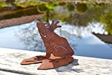 Unbekannt Frosch auf Seerosenblatt Metall Edelrost Rost Rostfigur Deko Dekoration Deko-Idee Dekofrosch Dekotier Rostdeko Teichdeko Geschenk-Idee Geschenk