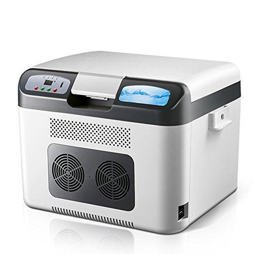 LIQICAI 26L Camping Kühlschrank Tragbarer Tragegurt 12V 24V DC (Auto)/230V AC (Zuhause) (Farbe : Silber)