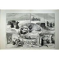 Neve 1882 della Slitta del Cavallo di Jeanette della Squadra della Siberia Kirghis