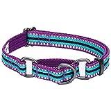 Blueberry Pet 1,5cm S 3M Reflektierendes Bunt Gestreiftes Violett und Himmelblaue Sicherheitstraining Martingale Hundehalsband für Kleine Hunde