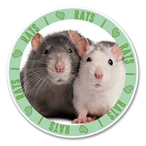 2 x 10cm/100mm Ich liebe Ratten Vinyl SELBSTKLEBENDE STICKER Aufkleber Laptop reisen Gepäckwagen iPad Zeichen Spaß #6142 (Ratten Liebe)