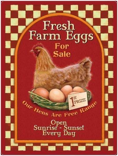 fresh-farm-eggs-poule-nid-et-des-oeufs-petit-dejeuner-sain-sans-soilders-gamme-frais-par-les-oeufs-p