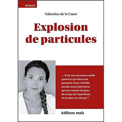 Explosion de particules: Un premier roman plein d'humour (MOLS)