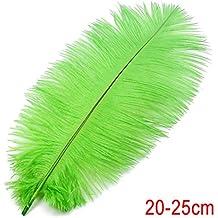 10pcs Plumas de Avestruz Decoración para Disfraces Sombreros Tarjetas Bricolaje 20-25cm (verde)