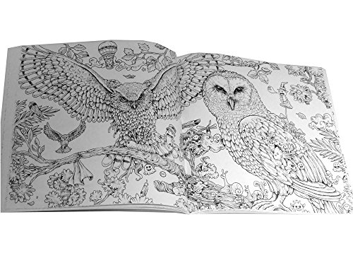 Animorphia: An Extreme Colouring and Search Challenge (Kerby Rosanes ...