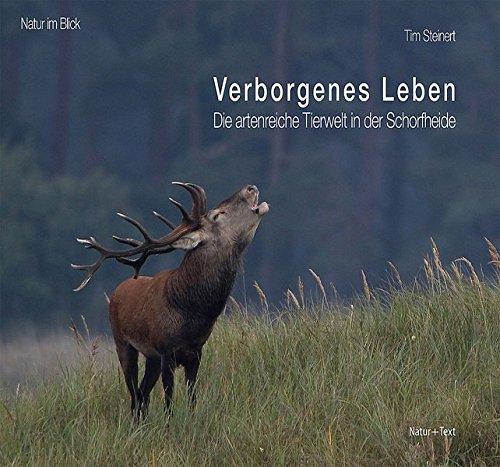 Verborgenes Leben: Die artenreiche Tierwelt in der Schorfheide (Natur im Blick)