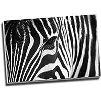 African Zebra Nero Bianco Stampa Artistica da Parete su Tela Stampe su tela grande A176,2x 50,8cm (76,20x 50,8cm)