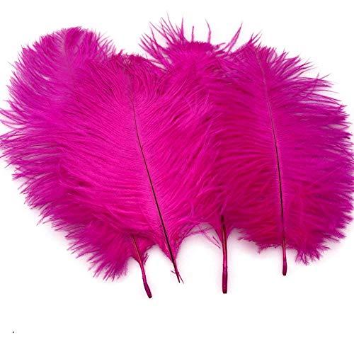 Sowder 20pcs Natural 10–12pulgadas (25–30cm) plumas de avestruz pluma para boda mesa decoración para el hogar