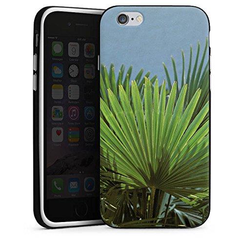 Apple iPhone X Silikon Hülle Case Schutzhülle Palme Blatt Palmenwedel Silikon Case schwarz / weiß