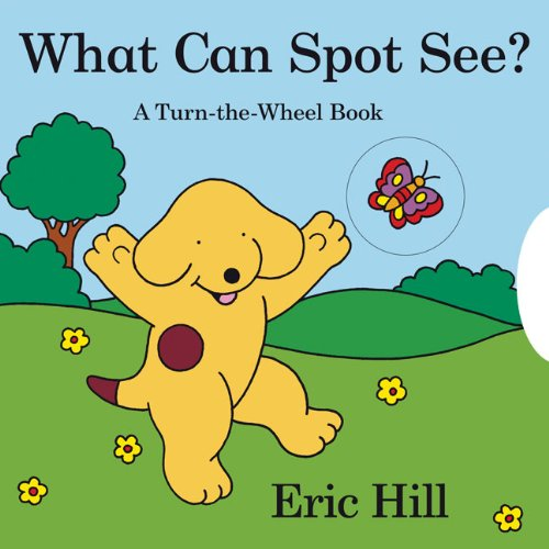 What Can Spot See?