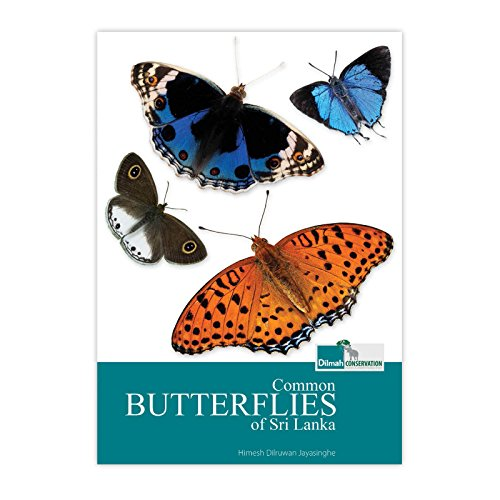 an-introduction-to-common-butterflies-of-sri-lanka-english-edition