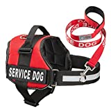 Industrial Puppy Service Dog Harness & Matching Leash Set Available in 7 Sizes From Extra Small to Extra Large Vest Features Reflective Patch and Comfortable Mesh Design From