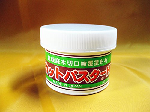 mastice-giapponese-pasta-cicatrizzante-specifico-per-bonsai-di-latifoglie-160-gr