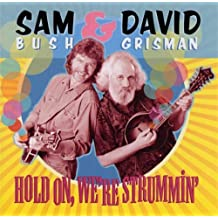 Hold on We're Strummin by Bush (2003-09-23)