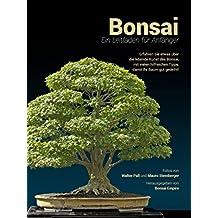 Bonsai: Ein Leitfaden für Anfänger