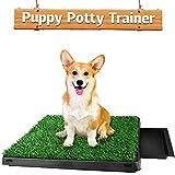 Hompet Hundeklo Hundetoilette Welpentoilette Trainingsunterlage, Indoor Hundetöpfchen, HundeTrainingRasenmatte für Kleine Hunde Grosse Hunde ältere 63 x 51 x 7cm