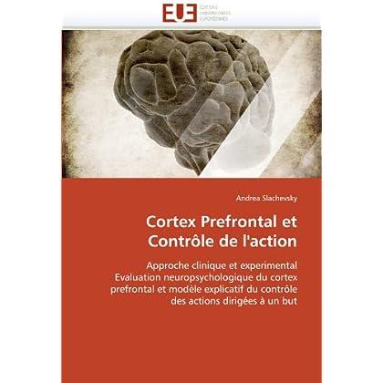 Cortex prefrontal et contrôle de l''action