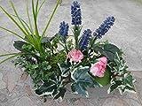 künstliches Pflanzen Set, A