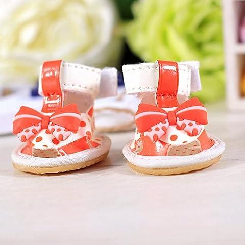 Punto d'onda bow tie cani sandali scarpe barboncino primavera ed