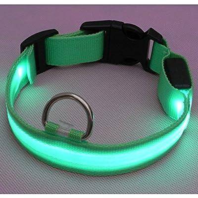 Sijueam Nylon USB Hundehalsband LED Halsband Leuchthalsband mit USB Kabel für Haustier Hunden