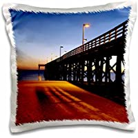 Florida - Public Pier, Gulf of Mexico, Panama City, Florida - Franklin Viola - 16x16 (Florida Pier)
