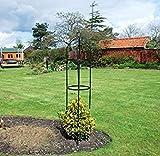 Kingfisher - Obelisco da giardino per rose e piante rampicanti, 1,9 m