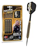 Phil Taylor Power Bolt Steel Darts, Dartpfeile vom Target - World Champion 2013, Gewicht:22 g