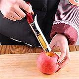 Apfelentkerner Entferner. Edelstahl Apfelentkerner und Pitter Entferner Werkzeug Core Trennwand Werkzeug für Apple, Birne, Kirsche, chinesische Jujube, rot Datum oder mehr mit scharfen Wellenschliff-Klinge (rot + silber)
