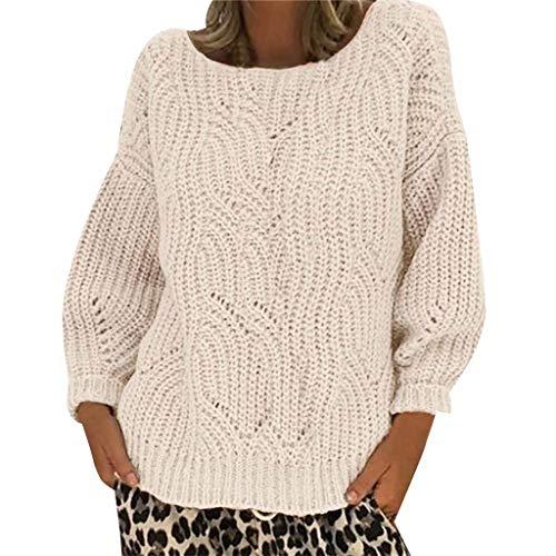 DAY.LIN Chandail Femmes Pull à Tricoter à Manches Longues et à Capuche Couleur Unie Sweater Pullover Pas Cher