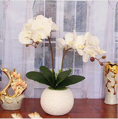 Trockenblumen Simulationsanzug Topfpflanzen, Schmetterling Orchidee Kunst, Seide künstliche Blumen, Wohnzimmer, Esstisch gelegt Blumenschmuck,Größe: 50 * 50CM