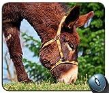 Home Esel Mule Gras 108321Generic Maßgeschneiderte Gummi Mauspad Gaming Mauspad