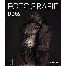 Fotografie Dogs: Lassen Sie Ihre Bilder sprechen und zeigen Sie die emotionalsten Momente mit Ihrem Hund.