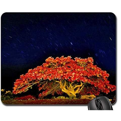 autumn-tree-meteor-shower-mouse-pad-mousepad-sky-mouse-pad