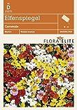 Elfenspiegel Carnevale von Flora Elite [MHD 06/2018]