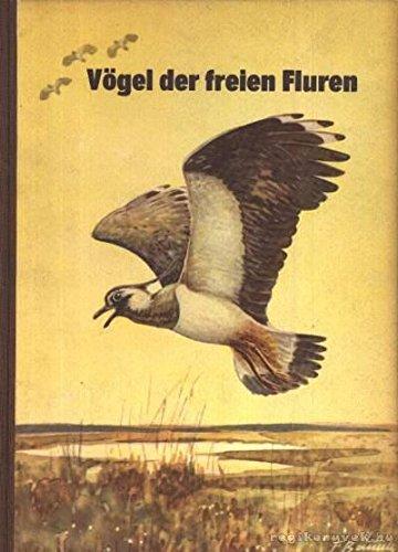 Vögel der freien Fluren.
