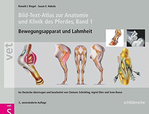 Bild-Text-Atlas zur Anatomie und Klinik des Pferdes Band 1. Bewegungsapparat und Lahmheiten