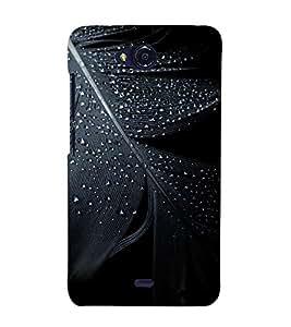 PrintVisa Feather Click 3D Hard Polycarbonate Designer Back Case Cover for Micromax Bolt Q338