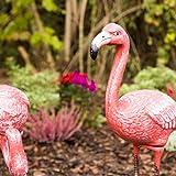 relaxdays deko flamingo metall vor dem beet
