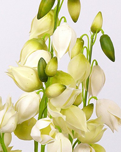 artplants Set 2 x Künstliche Yucca Pflanze Twila, blühend, Creme, 130 cm – Kunstpalme/Deko Palme