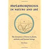Metamorphosis in Nature and Art: The Dynamics of Form in Plants, Animals and Human Beings (Art & Science)