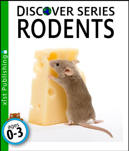 rodents-discover-series